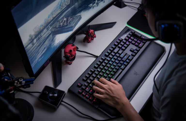The Razer <br> Mechanical Switches